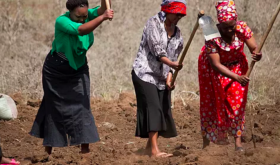 Tanzania_Vegetable_Evangelism-768x403