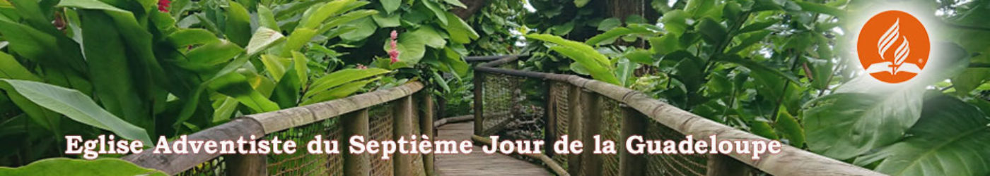 cropped-image-fond-zoo-FEde-Guadeloupe-Adventiste-1.jpg